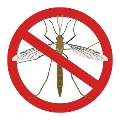 Pourquoi les moustiques me piquent-ils, mais pas les autres?